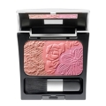 MAKE UP FACTORY Румяна Rosy Shine Blusher